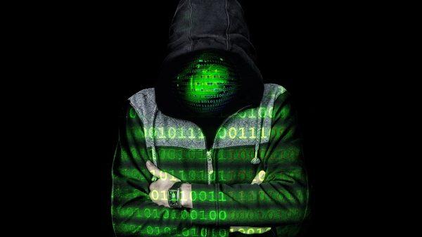 dark web platform operators